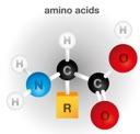 Generic amino acid